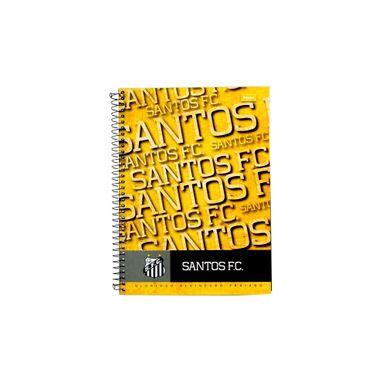Santos-Glorioso-Alvinegro-Praiano