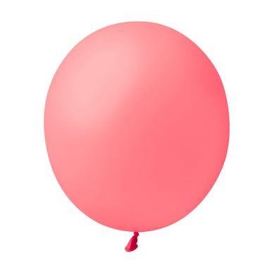 balao-sao-roque-rosa-pink-7