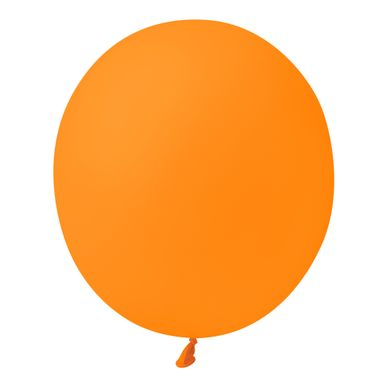 laranja-mandarim-9