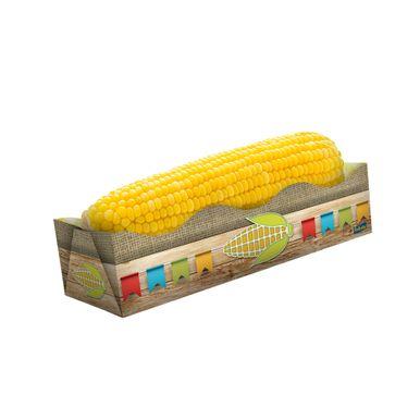 foto-caixa-para-milho