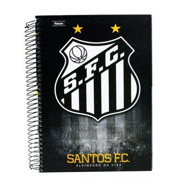 Santos-200-folhas-Alvinegro-Da-Vila