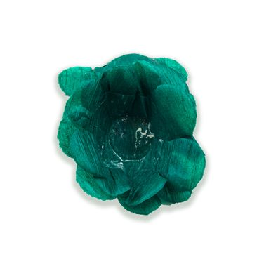 forminha-stillus-verde-bandeira