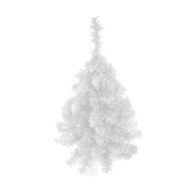 arvore-alpino-branca